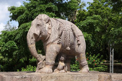 Beautiful elephant sculpture, sun temple Konark Royalty Free Stock Images