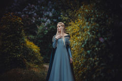 The beautiful elf. In a long blue dress is walking in a green forest full of branches, ,Princess in vintage dress, the queen of the forest,fashionable toning royalty free stock photo