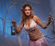 Beautiful elf woman with a lantern in a forest. Elf in magical winter forest with lantern Stock Photography