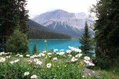 Beautiful emerald lake (Canada) Royalty Free Stock Photos
