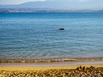 Free Beautiful Empty Sandy Beach - Small Sand Castles Stock Photo - 147167170
