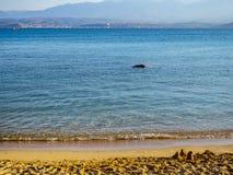 Beautiful empty sandy beach - small sand castles. Calm waters stock photo