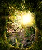 Beautiful enchanting forest opening path leading to a bright light. 3d render