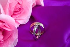 Beautiful Engagement Rings with Pink Roses on Colorful Background royalty free stock images