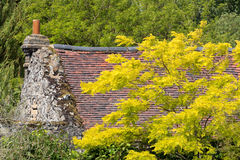 Beautiful English Cottage with Autumn Colours royalty free stock photos