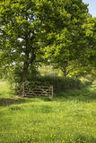 Beautiful English countryside landscape image of meadow in Sprin Stock Photos