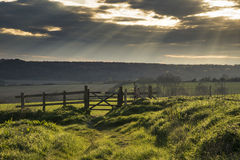 Beautiful English countryside landscape over fields at sunset. Stunning English countryside landscape over fields at sunset Royalty Free Stock Photography