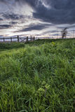 Beautiful English countryside landscape over fields at sunset Royalty Free Stock Images