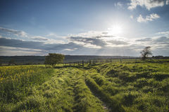 Beautiful English countryside landscape over fields at sunset Stock Images