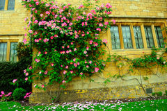 Beautiful English house and flowers in Cotswolds, England, UK Royalty Free Stock Image