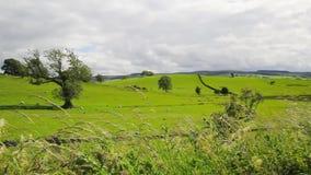 Beautiful English landscape, Yorkshire, Uk, HD footage stock video footage