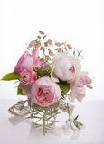 Beautiful English rose flower bouquet on white background Stock Images