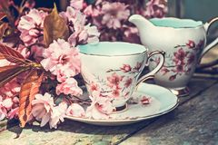 Beautiful, English, vintage teacup with Japanese cherry tree blossoms. Close up stock image