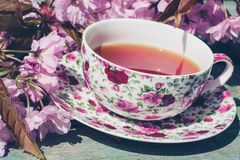 Beautiful, English, vintage teacup with Japanese cherry tree blossoms,. Close up Stock Photos