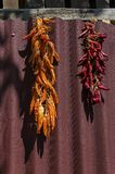 Beautiful enticing string dry ripe råd and yellow chilli pepper suspended on the wall. Zavet town, Bulgaria stock photo