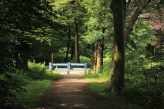 Free Beautiful Entrance With Fence To Park. Secret Garden Royalty Free Stock Photo - 72998535