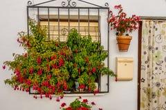 Beautiful entries, doors and windows of Frigiliana. Village of Malaga royalty free stock image