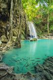 Beautiful Erawan Waterfall in Erawan National Park Royalty Free Stock Images