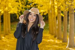 Beautiful Korean Brunette Model Posing In A Field Of Yellow Leav. A beautiful ethnic brunette model posing outdoors in a field of yellow leaves Royalty Free Stock Photography