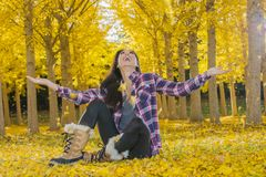 Beautiful Korean Brunette Model Posing In A Field Of Yellow Leav. A beautiful ethnic brunette model posing outdoors in a field of yellow leaves Royalty Free Stock Images