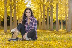 Beautiful Korean Brunette Model Posing In A Field Of Yellow Leav. A beautiful ethnic brunette model posing outdoors in a field of yellow leaves Stock Image