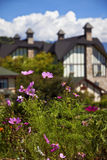A beautiful Europe style house and a garden Royalty Free Stock Photography