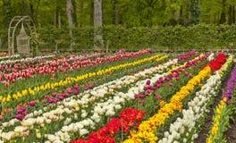Beautiful European Garden Royalty Free Stock Photos