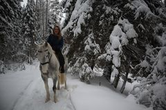 Beautiful european girl riding on a beige horse in the winter forest. Woman hugging a horse stock photo