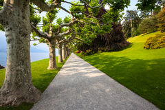Beautiful european lake side garden, tree lined walkway into dis Royalty Free Stock Photography
