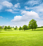 Beautiful european landscape. Spring field with green grass Royalty Free Stock Images