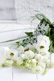 Beautiful eustoma flower Stock Photos