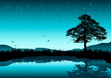 Beautiful Evening. A beautiful evening scene with a tree by a lake; stars in the sky Stock Image