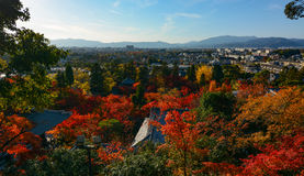 Beautiful evening autumn view of the Kyoto city skyline in Japan with red maples and temple rooftops Stock Photo