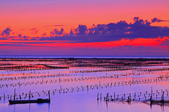 Beautiful evening at beach in Tainan Royalty Free Stock Photography