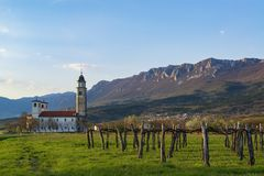 Beautiful evening countryside landscape with vineyard, church and mountains. On the background. Vipava valley, Slovenia royalty free stock photos