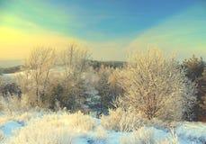 Beautiful evening landscape Stock Photo