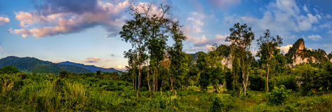 Beautiful evening landscape with the cloud sky. Khao Sok National Park, Surat Thani Province, Thailand Royalty Free Stock Photography