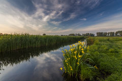 Beautiful evening landscape with the river Royalty Free Stock Images