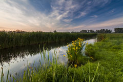 Beautiful evening landscape with the river Stock Image