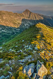 Beautiful evening on ridge of the summer mountains Royalty Free Stock Photography