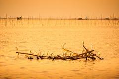 Beautiful evening sea Thailand. Stock Photos