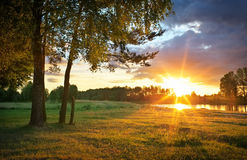 Beautiful evening sunny landscape with trees and river Royalty Free Stock Photo