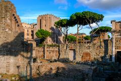Beautiful evening view of ancient remains of the forum Nerva, ruins of Ancient Rome. Forum Transitorium Nerva. stock images
