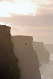 Beautiful Evening View of Cliffs of Moher Royalty Free Stock Images