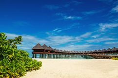 Beautiful exotic beach and amazing wooden bungalow on turquoise water royalty free stock image
