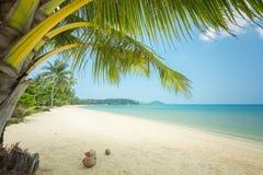 Beautiful Exotic beach Royalty Free Stock Photography