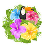 Beautiful Exotic Jungle Background Royalty Free Stock Photos