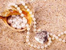 Beautiful exotic shell and pearls Stock Images