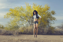 Beautiful exotic young woman long hair Royalty Free Stock Photo