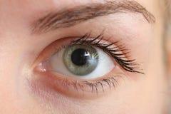 Beautiful eye Stock Photo